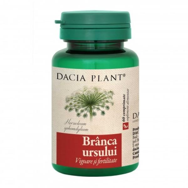 Branca ursului Dacia Plant - 60 tablete