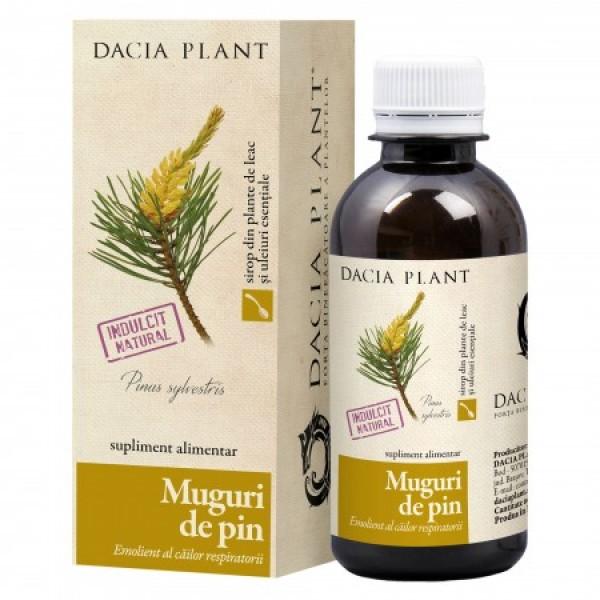 Sirop muguri pin Dacia Plant - 200 ml