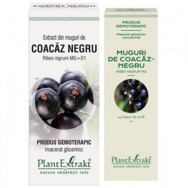 Extract din muguri de coacaz negru PlantExtrakt - 50 ml