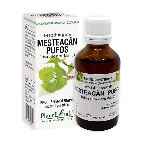 Extract din muguri de mesteacan pufos PlantExtrakt - 50 ml