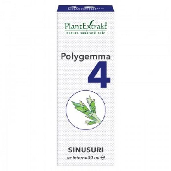 Polygemma nr 4 (sinusuri) PlantExtrakt - 30 ml