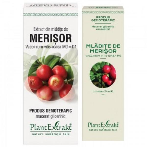 Extract din mladite de merisor PlantExtrakt - 50 ml