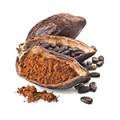 Cacao, roscove si ciocolata