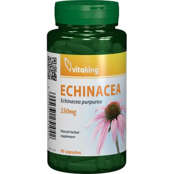 Extract de echinacea 250 mg Vitaking - 90 capsule