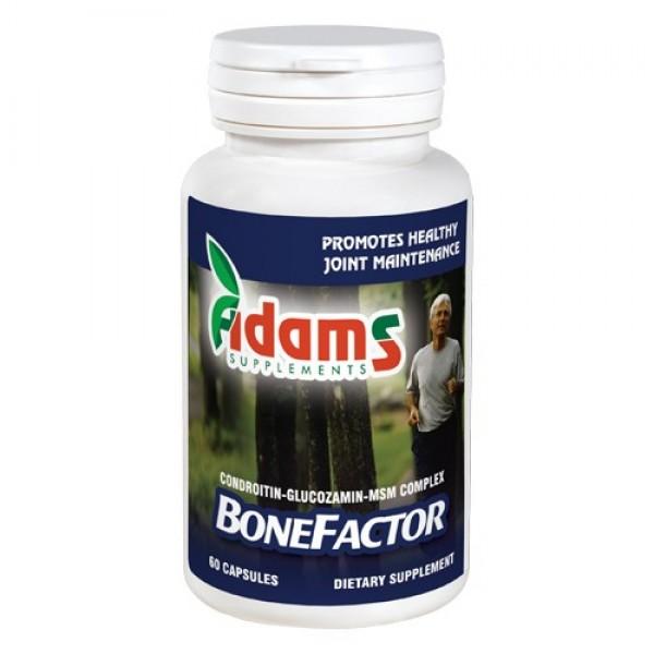 BoneFactor GS / Condroitin / MSM Adams Supplements - 60 capsule